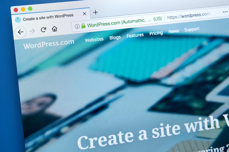 Reasons to Avoid Using a Free WordPress Theme for Your Website